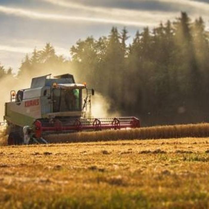 BTS ACSE (Analyse, Conduite et Stratégie de l'Entreprise Agricole) - POMMERIT