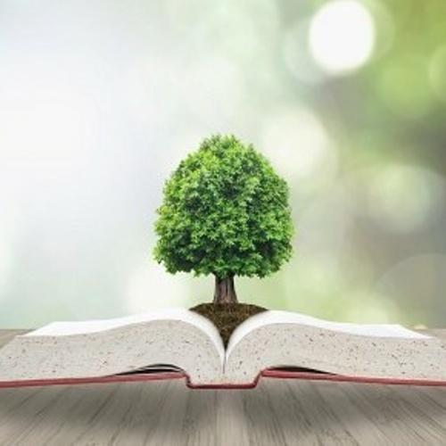 Licence : Sciences de la Vie et de la Terre - Biologie